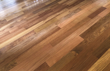 370x240_Elite-Wood-Floor